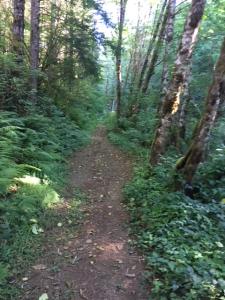 Lk Silvia trail